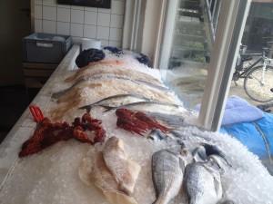 Frischen Fisch gefällig?